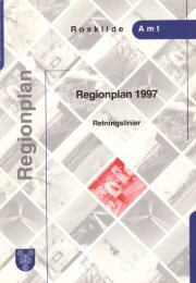 Regionplan'1997