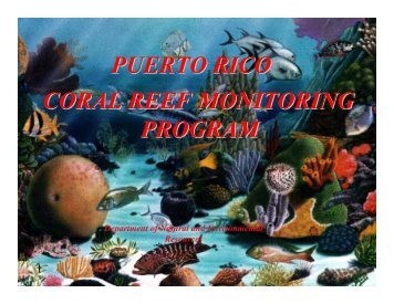 Puerto Rico Coral Reef Monitoring Program