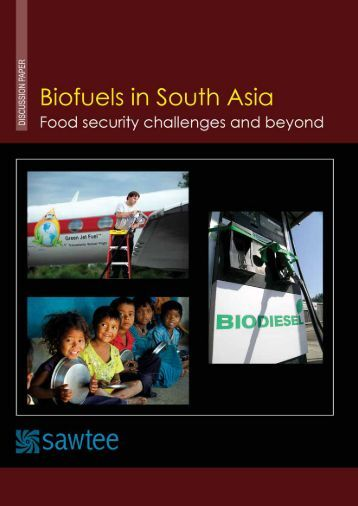Biofuels in South Asia Food Security Challenge and Beyond