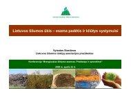 Lietuvos šilumos ūkis - esama padėtis ir kliūtys vystymuisi.pdf