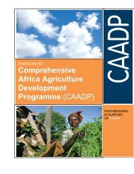 Agriculture and CAADP: