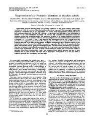 Suppression of ctc promoter mutations in Bacillus subtilis.