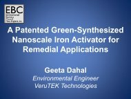 A Patented Green-Synthesized Nanoscale Iron Activator for ...
