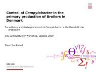 Control of Campylobacter in the primary production of Broilers ... - SVA