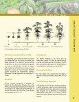 guía mip en el cultiv o de la papa - Centro Nacional de Información y ... - Page 7