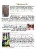 noviny 6-1.pdf - Page 2