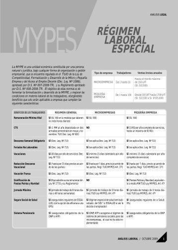 Régimen Laboral Especial de la MYPE - AELE