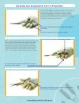 CHROMOSOME SURGICAL HANDLE™ - Page 3