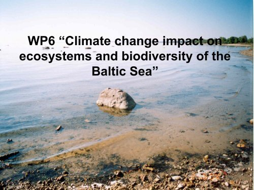 """WP6 """"Climate change impact on ecosystems and biodiversity of the ..."""
