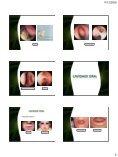• Fossas nasais • Seios paranasais • Faringe • Cavidade bucal ... - Page 4