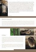 Vleermuizen in de kou - Natuurpunt - Page 2