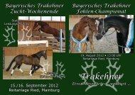 2. Bayerisches Trakehner Fohlen-Championat 2012 – Hengstfohlen