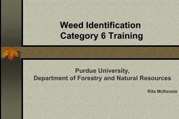 Category 6 - Weed Identification Training - Purdue University