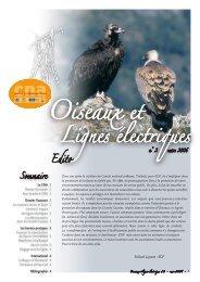 Bulletin n°2 - RTE