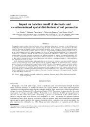 Impact on Sahelian runoff of stochastic and elevation ... - LTHE