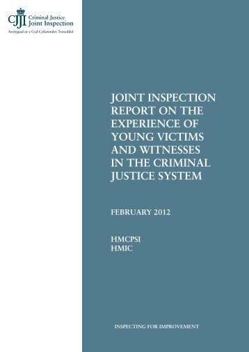 joint inspection report on the experience of young victims ... - HMCPSI
