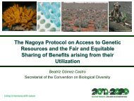 The Nagoya Protocol on Access to - ABS Capacity Development ...