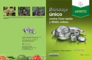 Díptico Infinito - Bayer CropScience Mexico