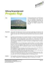 Stiftung Bergwaldprojekt Projekt Rigi