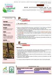 BSV 2013 - Direction régionale de l'alimentation, de l'agriculture et ...