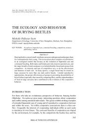 THE ECOLOGY AND BEHAVIOR OF BURYING BEETLES