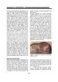 Determination of grasscutter age - African Journals Online (AJOL) - Page 2