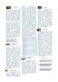 BOLETIN INSTITUCIONAL - Page 3