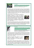 BOLETIN INSTITUCIONAL - Page 7