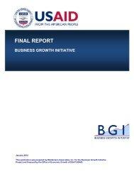BGI Final Report - Economic Growth - usaid