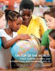 NAPCS-OECD-Report-04-REV