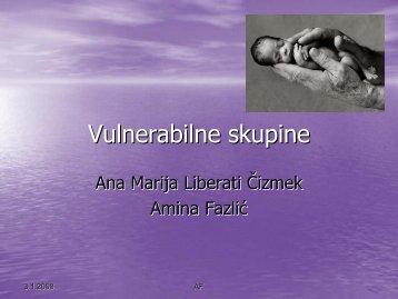 Vulnerabilne skupine