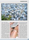 Na mirisnom otoku mirisni vrt - Ina - Page 3