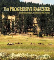 June 2008 Progressive Rancher - The Progressive Rancher Magazine