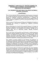 PROTOCOLO DE GUATEMALA - International Democracy Watch