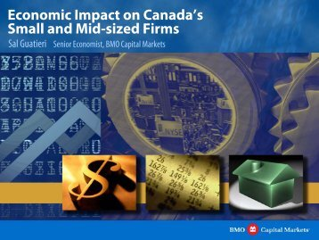 Economic Impact on Canada's Small and Mid-sized Firms