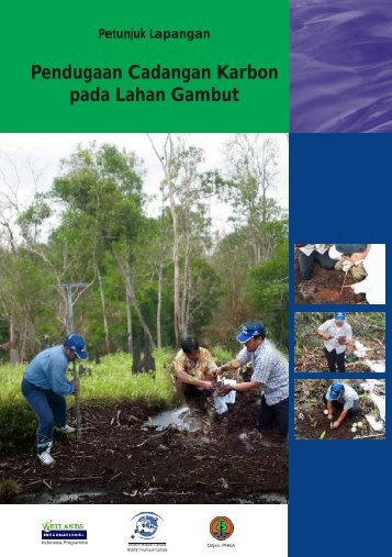 Panduan Pendugaan Cadangan Karbon.pdf - Wetlands ...