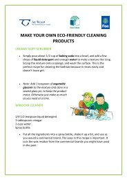 make your own eco-friendly cleaning products - Green Schools Ireland