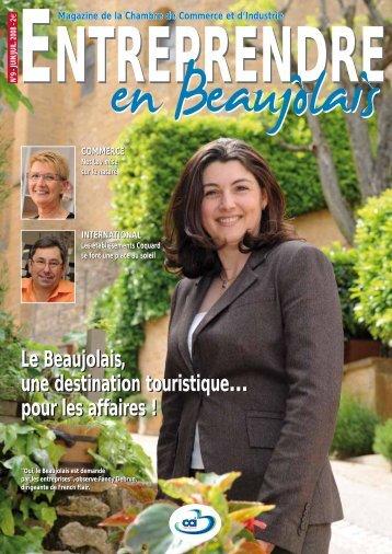 Juillet 2008 - Chambre de Commerce et d'Industrie de Villefranche ...