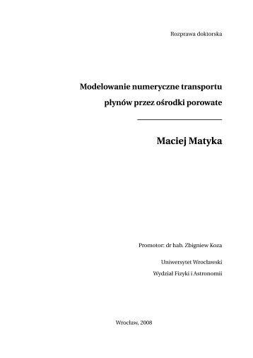 (polish), PhD Thesis - Panoramix
