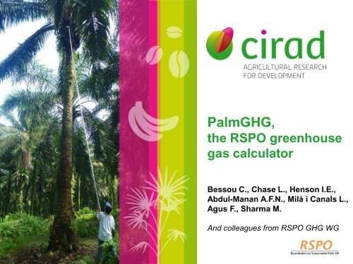 PalmGHG, the RSPO greenhouse gas calculator for oil palm