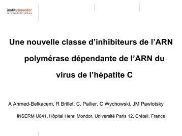 Une nouvelle classe d'inhibiteurs de l'ARN polymérase ... - Afef