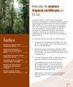 Madera Tropical Certificada - EcoNegocios Agrícolas - Page 5