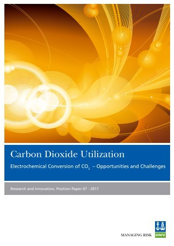 Carbon Dioxide Utilization - DNV