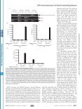 Epstein-Barr Virus Lytic Infection Induces Retinoic Acid-responsive ... - Page 5