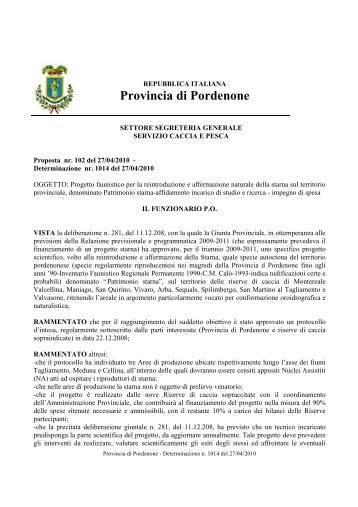 Determinazione dirigenziale - Provincia di Pordenone