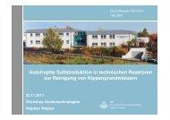 Autotrophe Sulfatreduktion in technischen ... - GWZ Dresden