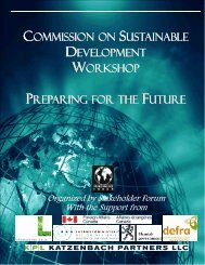 Commission on Sustainable Development Workshop Preparing for ...