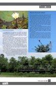Archivo Histórico: 20 años como depositario de la memoria de la UAM - Page 7
