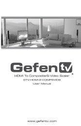 HDMI To Composite/S-Video Scaler - Gefen