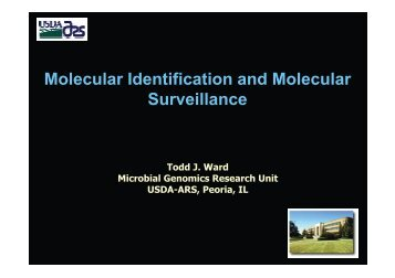 Molecular Identification and Molecular Surveillance